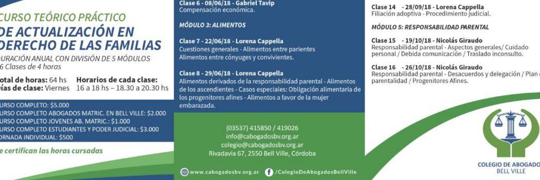 Curso Teórico Práctico de Actualización en Derecho de las Familias